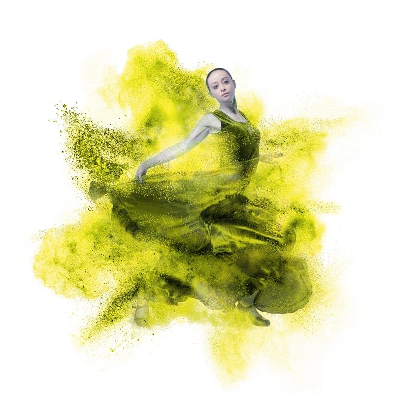 Flamenco Dancer Yellow Room